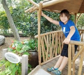 Beautiful Children's Garden at the Arboretum