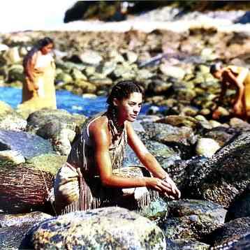 Wampanoag woman gathering mussels along a rocky shore at low tide. Photographer, Bert Lane.